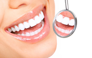 Free dental courses